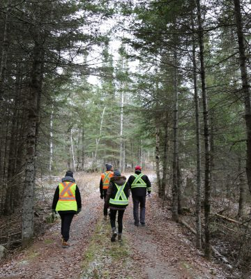 Assessing the Project Site for Potential Impacts